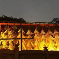 """С Новым Годом  Огненной Обезьяны по китайскому календарю!   Правление ВГО """"УАРМА"""":"""