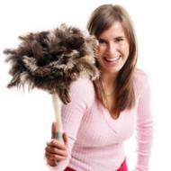 Домашняя пыль опасна для здоровья: избавляемся от пылевых клещей